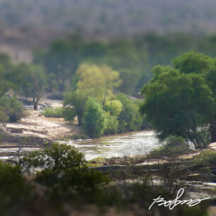 A look down the Tana river in Tsavo East