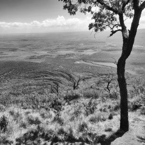 View over the Rift Vally from Mount Longonot.